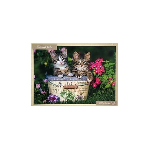 Curious Cats Jigsaw Puzzle ( 1000 Pieces )