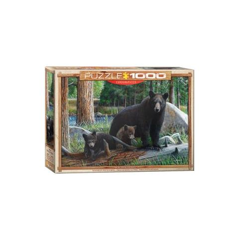 New Discoveries Jigsaw Puzzle ( 1000 Pieces )